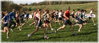 Image result for cross country running