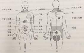 背中 右側 の 痛み