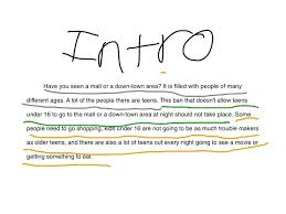 Introduction To Essays Examples Barca Fontanacountryinn Com