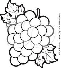 black and white grapes clipart. Plain Grapes Grapes Clipart Black And White Fresh Grape Free For And U