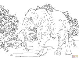Small Picture Free Coloring Page Elephant