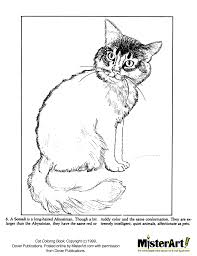 Halloween Kitten Coloring Pages ~ Alltoys for .