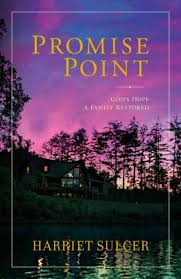 Promise Point Gods Hope A Family Restored Hardcover