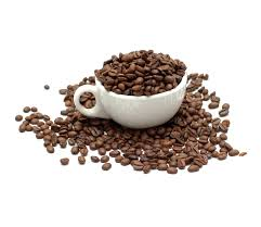coffee beans cup. Contemporary Beans White Cup With Coffee Beans 50482 Intended Coffee Beans Cup _