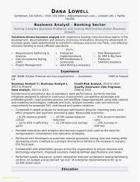 sap bw resume samples bi projectager resume symbiosisartscience org imposing sap bw sample