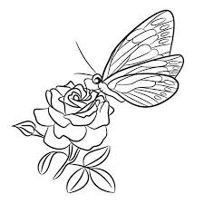 Easy To Draw Roses Butterfly On Blooming Rose Small Bud And Leaf Black Easy Drawing