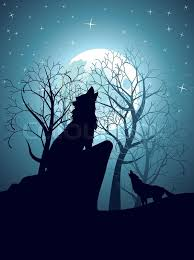 wolf howling at the moon. Wonderful Wolf Silhouette Of The Wolf Howling At Moon In Forest Night  Stock  Vector Colourbox On Wolf Howling At The Moon O