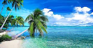 Beach wallpaper ...