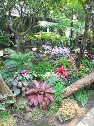 Small Picture 1294 best Gardens Tropical images on Pinterest Tropical garden