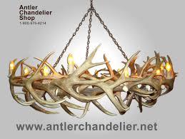 real antler elk mule deer round chandelier