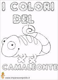 A Scuola Con Poldo Lapbook I Colori Del Camaleonte