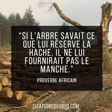 Proverbe Africain Sur La Nature De Diouf Boucar Réflexions