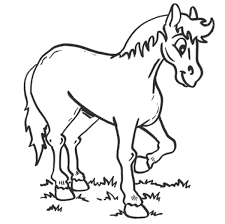 Small Picture Animal Coloring Pages Horses Coloring Pages