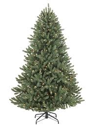 Canadian Blue Green Spruce