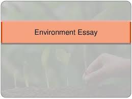 environment essay jpg cb