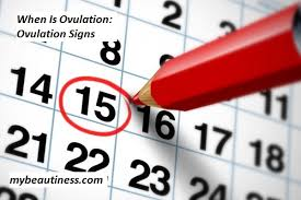 When Is Ovulation: Ovulation Signs | Women Beauty