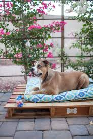 easy diy outdoor dog pallet bed 2