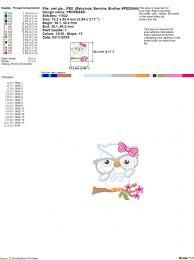 Owl Birthday Applique Design Owl Girl With Glasses Applique Machine Embroidery Design