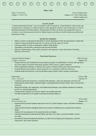 4 Finance Manager Resume Sample Ms Word Doc Format