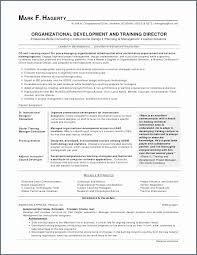 Examples Of Skills And Abilities On A Resume Amazing Resume Sample Skills And Abilities What Are Some Examples Of Skills