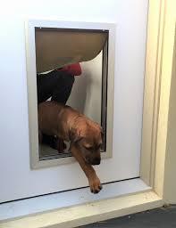 electronic dog doors. Electronic Dog Doors For Extra Large Dogs Elegant Aluminium Framed Door Suits Glass Timber