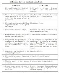 difference between plant and animal cells essay homework writing difference between plant and animal cells essay