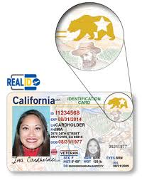 Internet Real Identification Id Renewal Card