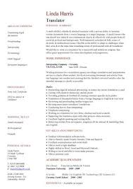 translator cv volunteer cv media resume template