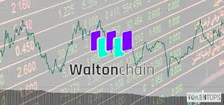Wtc Cryptocurrency Chart