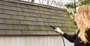 lichen roof