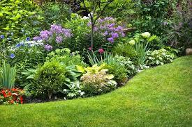 cutting flower garden layout garden flower garden planner beautiful full of enjoyment on your perennial garden cutting flower garden