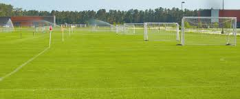 grass soccer field with goal. Fine Goal Textured Grass Soccer Field With Goal Ovation Football  Throughout Grass Soccer Field With
