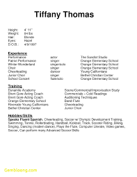 Awesome Resume Template Beginners Best Templates