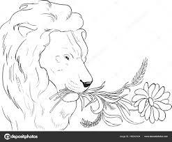 25 Idee Kleurplaat Leeuw Mandala Kleurplaat Voor Kinderen