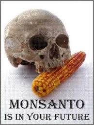 Image result for evil Monsanto