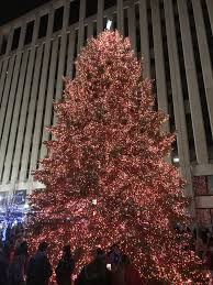 Dayton Ohio Christmas Tree Lighting Search Is On For Perfect Tree To Adorn Courthouse Square