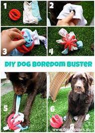 anxiety toys for dogs. Exellent Toys 20 DIY Dog Toys You Can Make At Home 19 Intended Anxiety For Dogs P