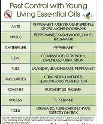 Essential Oils Pest Control Chart Essential Oils