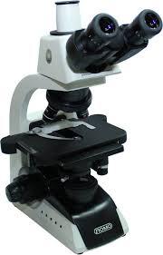 Микроскопы моно- и бинокулярные