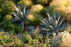 Small Picture Landscape Design Laguna Beach Molly Wood Garden Design
