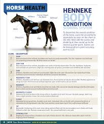 Purina Body Condition Score Chart Body Condition Scales The Colorado Link Project