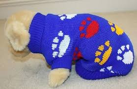 Blue Dog Sweater W White Yellow And Red Paw Images See