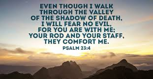 27 Bible Verses about Death - Find Peace & Comfort in Scripture