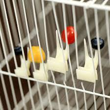 Top Sale Nice <b>2 pcs Pet Parrot</b> Fruit fork birds set on the cage ...