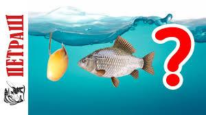 Как выбрать <b>КРЮЧКИ</b> для рыбалки? Рыболовные <b>крючки Фанатик</b>!