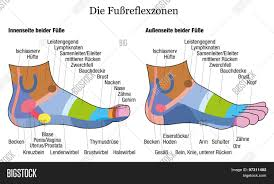 Foot Reflexology Side Vector Photo Free Trial Bigstock