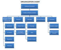 Hospital Chart Organization Chart Chellaram Hospital