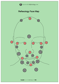 Acupressure Face Chart Face Reflexology Chart With Instructions