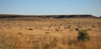 Image result for texas landscape