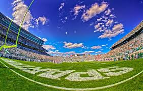 Spartan Stadium Michigan State University Michigan State